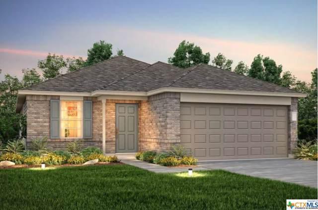 401 Ibis Falls Loop, Jarrell, TX 76537 (MLS #390070) :: Marilyn Joyce | All City Real Estate Ltd.