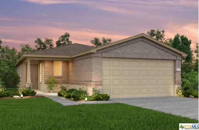317 Ibis Falls Loop, Jarrell, TX 76537 (MLS #390071) :: Marilyn Joyce | All City Real Estate Ltd.