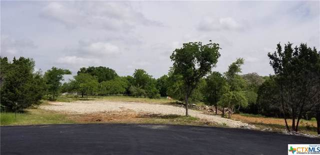 113 Spray Lane, Georgetown, TX 78633 (MLS #390252) :: Brautigan Realty