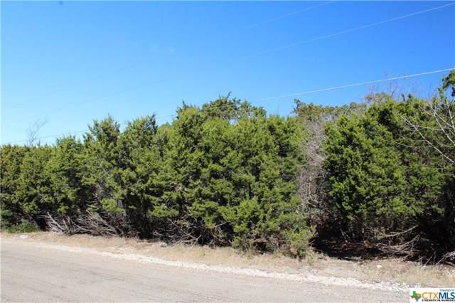 16004 Salado Drive, Temple, TX 76502 (MLS #390292) :: Brautigan Realty