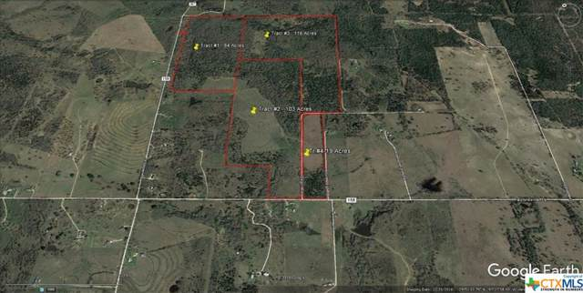 00 Taylorsville Tract #1 Road, Red Rock, TX 78662 (MLS #390361) :: The Graham Team