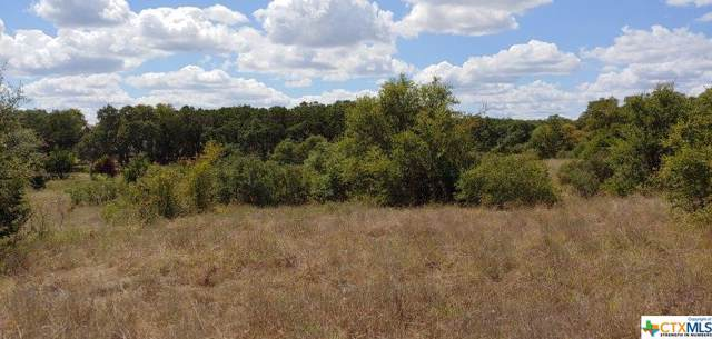 1964 Zinfandel, New Braunfels, TX 78132 (MLS #390371) :: Vista Real Estate