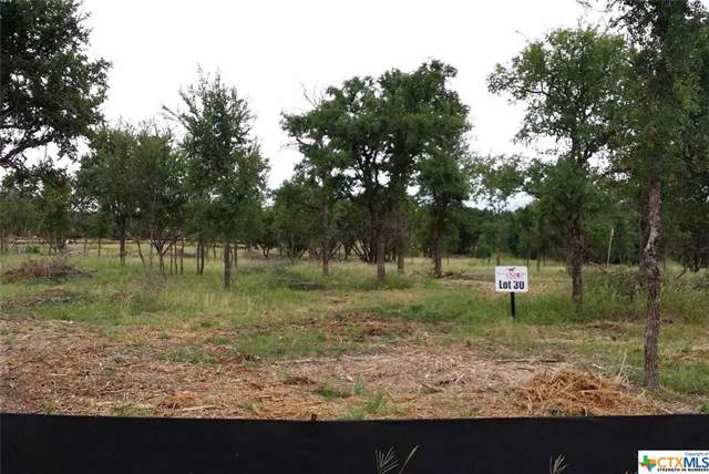 Lot 30 Trophy Oak Trail, Marble Falls, TX 78654 (MLS #390440) :: Berkshire Hathaway HomeServices Don Johnson, REALTORS®