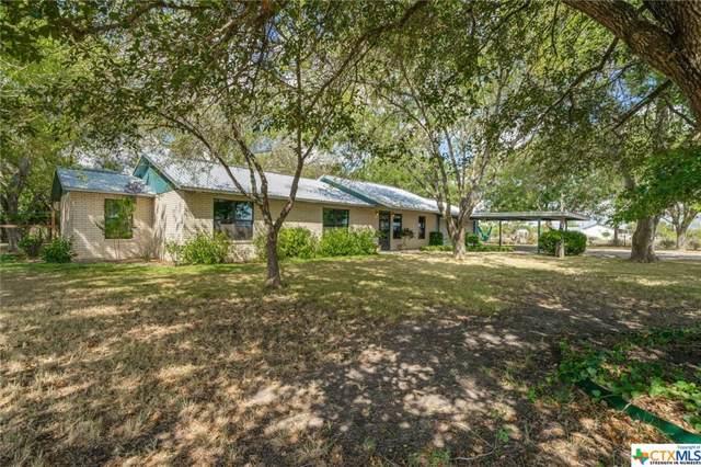 260 Haberle Road, Seguin, TX 78155 (MLS #390503) :: Brautigan Realty
