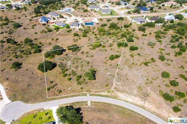 1979 Appellation, New Braunfels, TX 78132 (MLS #390850) :: Vista Real Estate