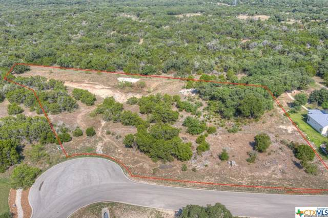 346 Lookout Ridge, New Braunfels, TX 78132 (MLS #390996) :: The Zaplac Group