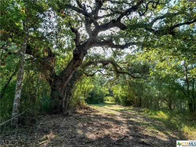 1776 Fm 1351, Goliad, TX 77963 (MLS #391271) :: The Zaplac Group