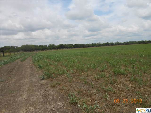 645 SW Abbott Rd., Saint Hedwig, TX 78152 (MLS #391488) :: The Zaplac Group