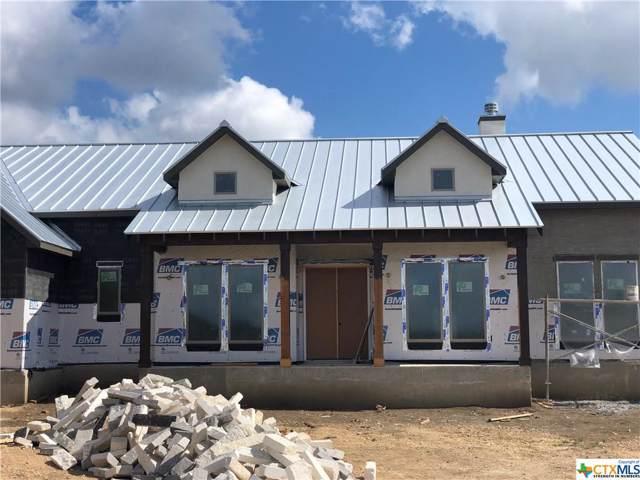 1320 Trentino, New Braunfels, TX 78132 (MLS #391792) :: Vista Real Estate
