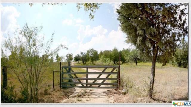 733 Cr 2337, Lampasas, TX 76550 (MLS #391862) :: The Real Estate Home Team