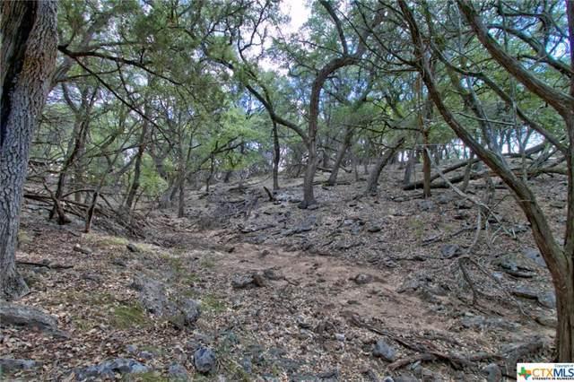1218 Stone Gully, New Braunfels, TX 78132 (MLS #391864) :: Vista Real Estate