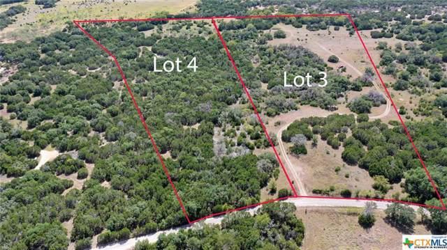 TBD County Rd 106, Purmela, TX 76566 (MLS #391966) :: Vista Real Estate