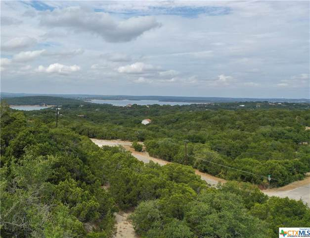645 Damar Drive, Canyon Lake, TX 78133 (MLS #392301) :: Berkshire Hathaway HomeServices Don Johnson, REALTORS®