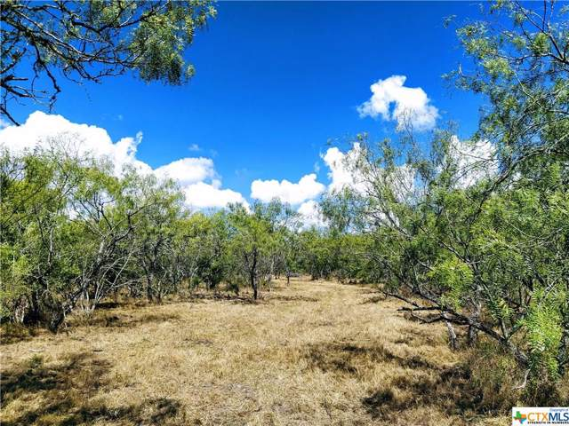 0 Us Highway 59 South, Goliad, TX 77963 (MLS #392336) :: The Zaplac Group