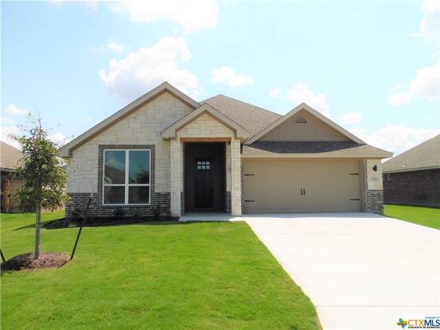 2513 Turtle Dove Drive, Temple, TX 76502 (MLS #392360) :: Erin Caraway Group