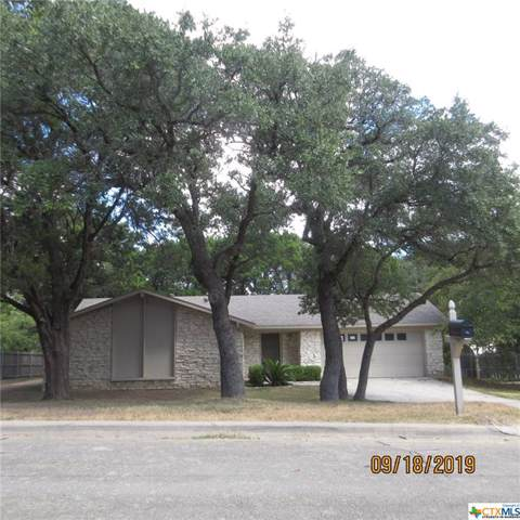 1116 Shine Lane, Harker Heights, TX 76548 (MLS #392565) :: Vista Real Estate