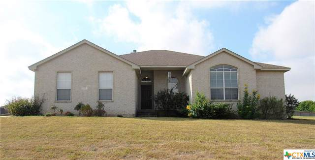 130 Blanco Drive, Hutto, TX 78634 (#392611) :: 12 Points Group