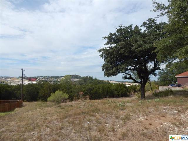 1904 Caribou Trail, Harker Heights, TX 76548 (MLS #392663) :: Isbell Realtors
