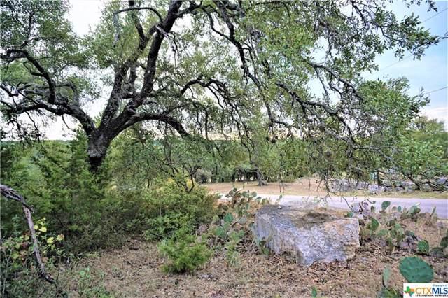 00 Cielo Ranch Drive, San Marcos, TX 78666 (MLS #392811) :: The Graham Team