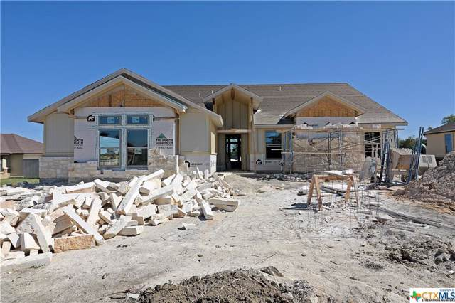 1040 Park View Drive, Salado, TX 76571 (MLS #392956) :: Isbell Realtors