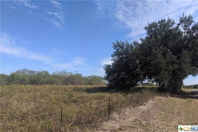 0000 Tulley Road, Cuero, TX 77954 (MLS #393572) :: The Zaplac Group