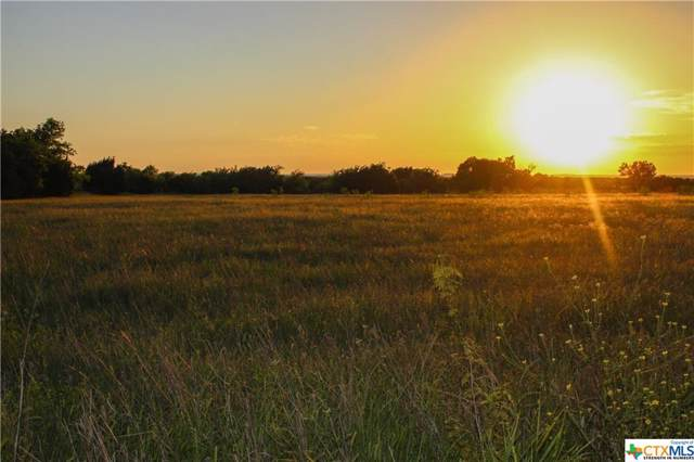TBD-A County Road 146, Gatesville, TX 76528 (MLS #393604) :: The Real Estate Home Team
