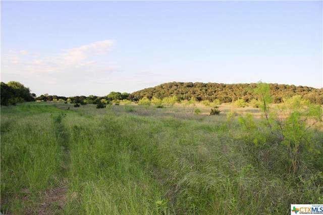 TBD-D County Road 146, Gatesville, TX 76528 (MLS #393613) :: The Real Estate Home Team