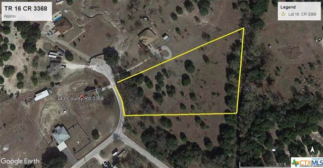 2.851 Acres County Road 3368, Kempner, TX 76539 (MLS #393631) :: The Real Estate Home Team