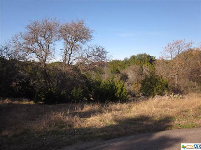4,5,6 Pancho Villa Drive, OTHER, TX 76513 (MLS #393658) :: The Real Estate Home Team