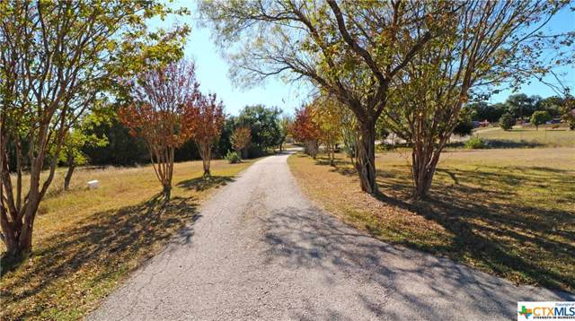 384 County Road 3368, Kempner, TX 76539 (MLS #393681) :: The Real Estate Home Team