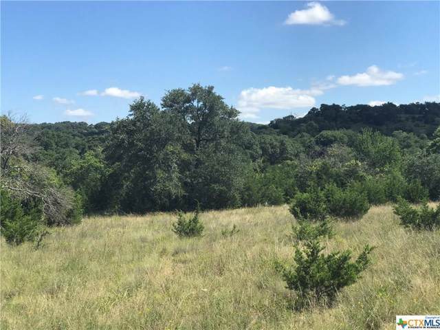 TBD Ranch Road 1623, Blanco, TX 78606 (MLS #393808) :: Berkshire Hathaway HomeServices Don Johnson, REALTORS®