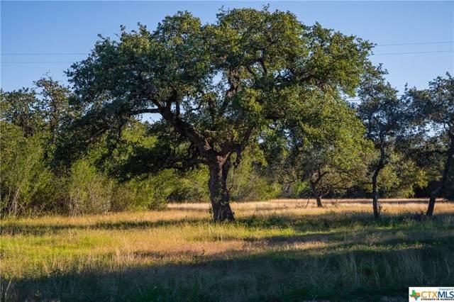 000 Deer Trail Lane, Goliad, TX 77963 (MLS #393997) :: The Zaplac Group