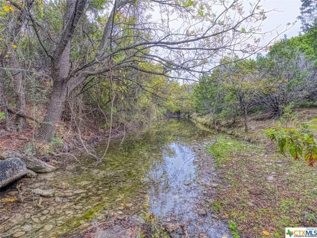 00 County Road 2109, Lometa, TX 78653 (#394120) :: Kourtnie Bertram | RE/MAX River Cities