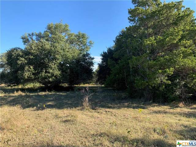 000 E Old Hallettsville Road, Flatonia, TX 78941 (MLS #394229) :: The Real Estate Home Team