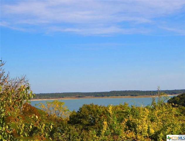 5155 Denmans Loop, Belton, TX 76513 (MLS #394233) :: Vista Real Estate