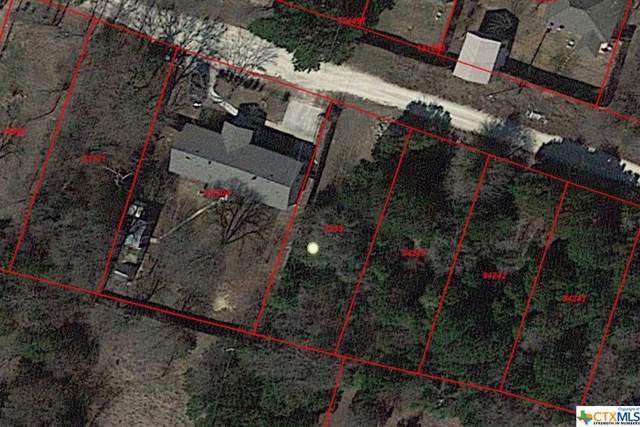 2953 Sherwood Loop, Belton, TX 76513 (MLS #394261) :: Erin Caraway Group