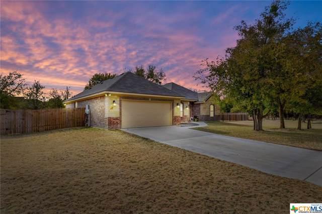 115 Buckskin Loop, Belton, TX 76513 (MLS #394327) :: The Graham Team
