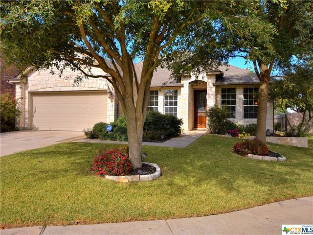 2744 Plantation Drive, Round Rock, TX 78681 (MLS #394430) :: Erin Caraway Group