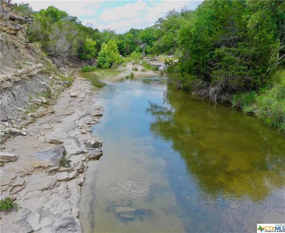 00 Cr 2275, Lometa, TX 76853 (#394452) :: Kourtnie Bertram | RE/MAX River Cities