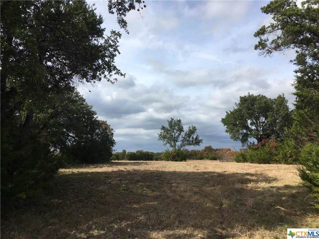 470 County Road 229, Florence, TX 76527 (MLS #394571) :: The Graham Team