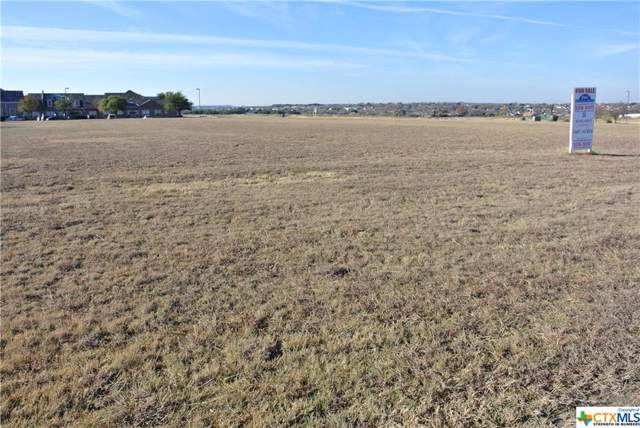 4901 Rosewood Drive, Killeen, TX 76502 (MLS #394692) :: The Real Estate Home Team