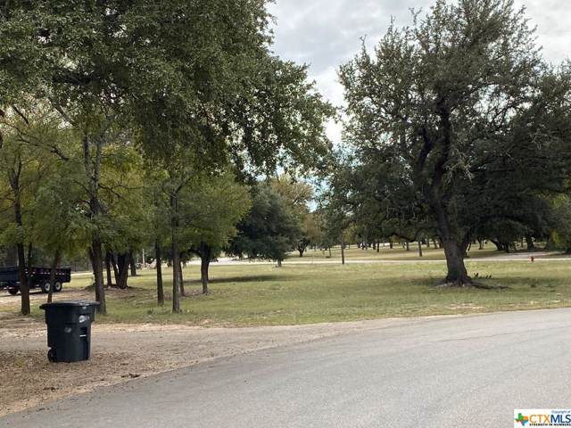 46 Lake Forest Drive, OTHER, TX 76513 (MLS #395859) :: Vista Real Estate