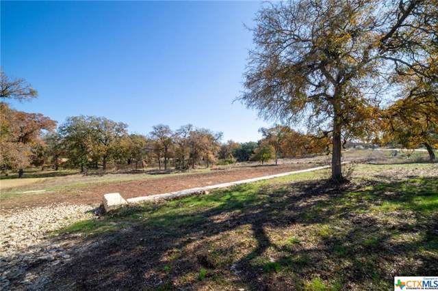 10725 Vista Heights Drive, Georgetown, TX 78628 (MLS #395985) :: Marilyn Joyce | All City Real Estate Ltd.