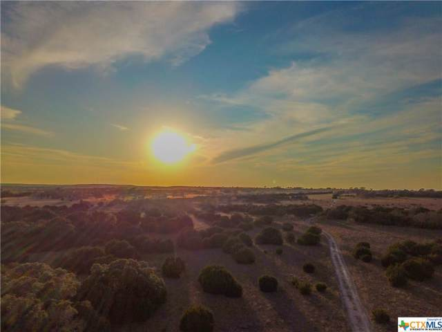 TBD Old Georgetown Road, Gatesville, TX 76528 (MLS #396146) :: The i35 Group