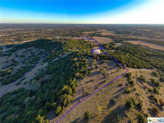 246 Private Road 4839, Kempner, TX 76539 (MLS #396191) :: The i35 Group