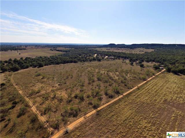 585 Jerald Drive, OTHER, TX 78624 (MLS #396320) :: Carter Fine Homes - Keller Williams Heritage