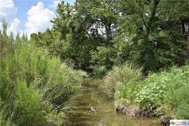 16.38 Acres County Road 3365, Kempner, TX 76539 (MLS #396323) :: The Real Estate Home Team