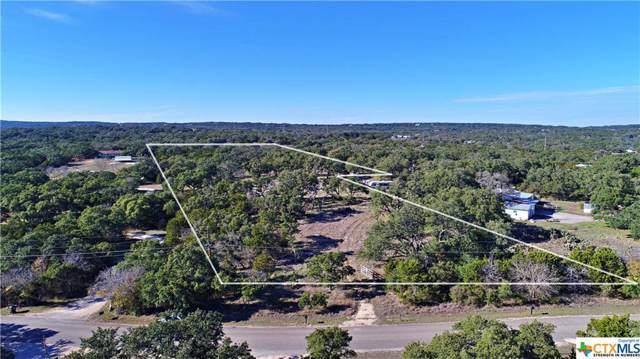 625 Oakwood Loop, San Marcos, TX 78666 (MLS #396505) :: Kopecky Group at RE/MAX Land & Homes
