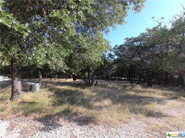 5261 Comanche Drive, Temple, TX 76502 (MLS #396765) :: The Zaplac Group