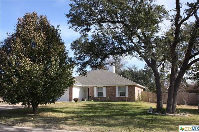 1226 Squire Drive, Belton, TX 76513 (MLS #397042) :: Erin Caraway Group
